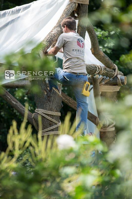 worker for karlovec design constructs wedding arbor