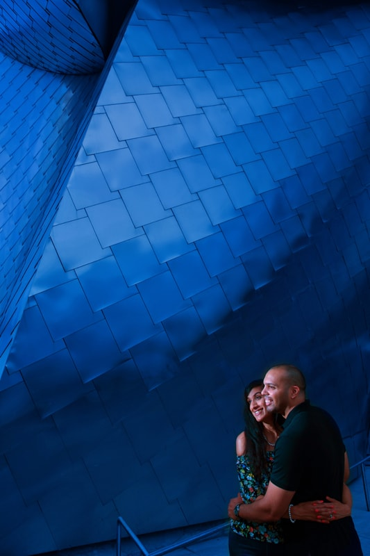 engagement picture in front of frank gehry building