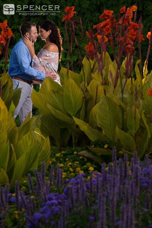 engagement picture in pittsburgh phipps