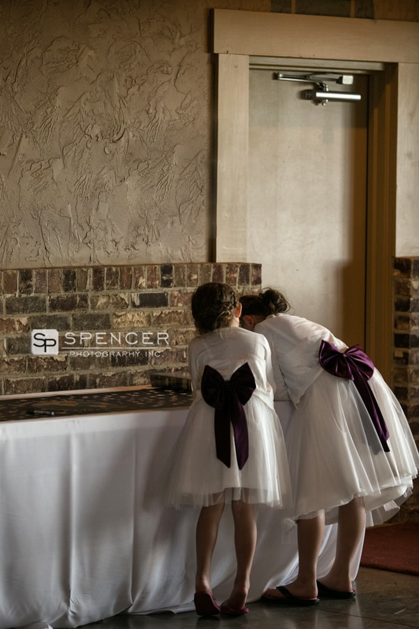 flower girl dresses at wedding reception in dover