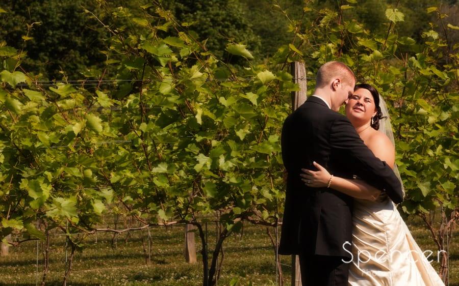 bride and groom hug in vineyards on wedding day at Gervasi