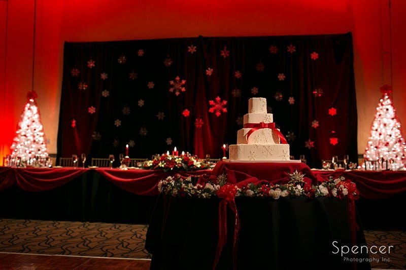 picture of cake at wedding reception at Bertram