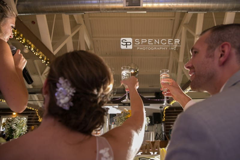 toasting at their vermilion on the lake wedding reception