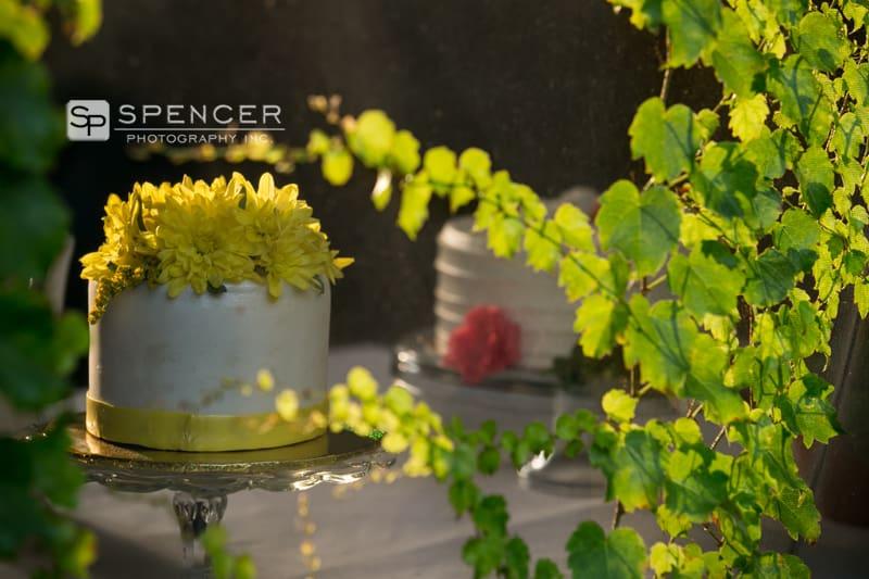 wedding cake in shaker heights