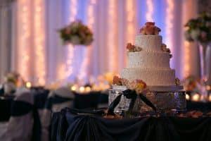 Craig and Christina's Landerhaven Wedding Reception