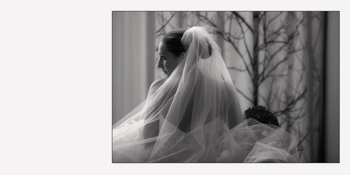 Wedding picture of bride