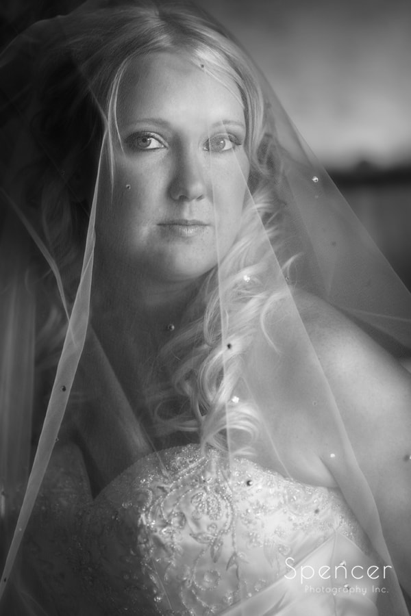 black and white wedding portriat of bride at Gervasi Vineyard