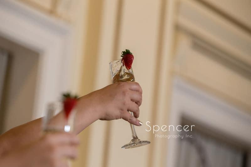 reception toast at Greystone Hall Akron
