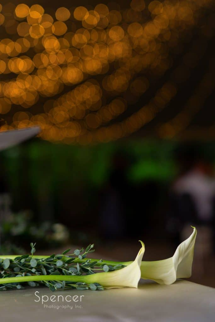 The Red Twig single flower at Thorncreek wedding reception
