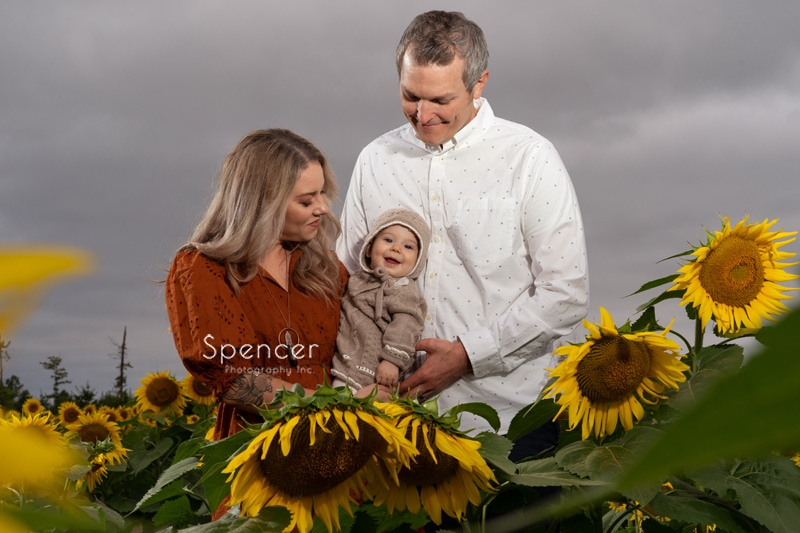 parents looking at baby in picture in sundlower field