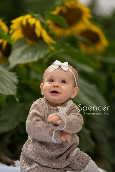 sunflower field picture of baby